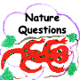 NatureQuestions